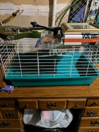 white and green pet cage Aliquippa, 15001