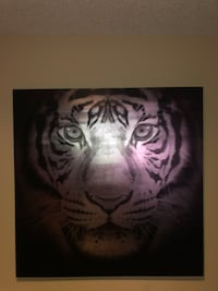 white and black tiger painting Houston, 77034
