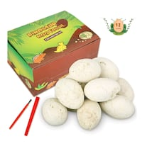 Dinosaur Eggs Dig Kit, 12-pack