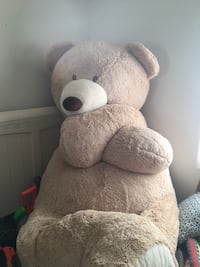 Extremely large Teddy Bear over 5'