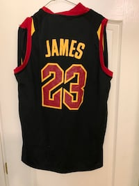 LeBron James Cleveland T-shirt With the pant Burnaby, V5J 3S7