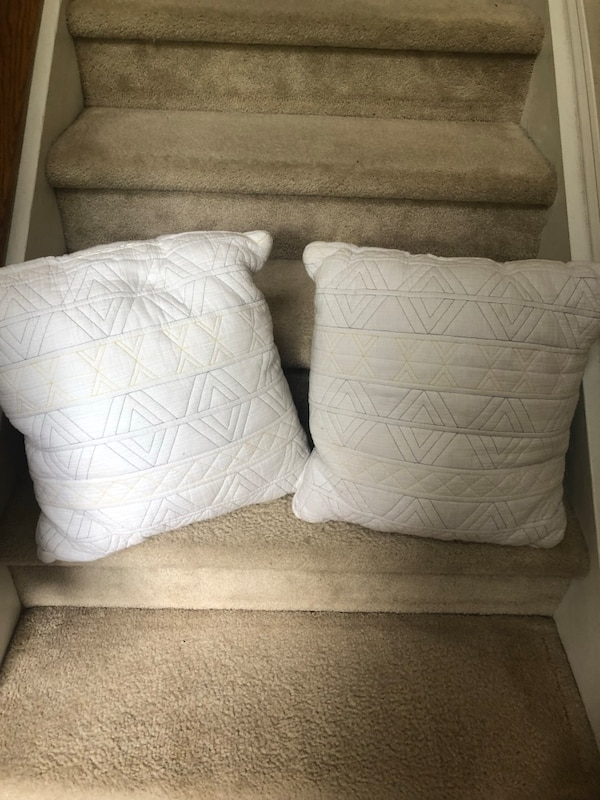 Throw Pillows set of 2 ba7c5b5e-9292-4893-828f-a7e909b0e96c