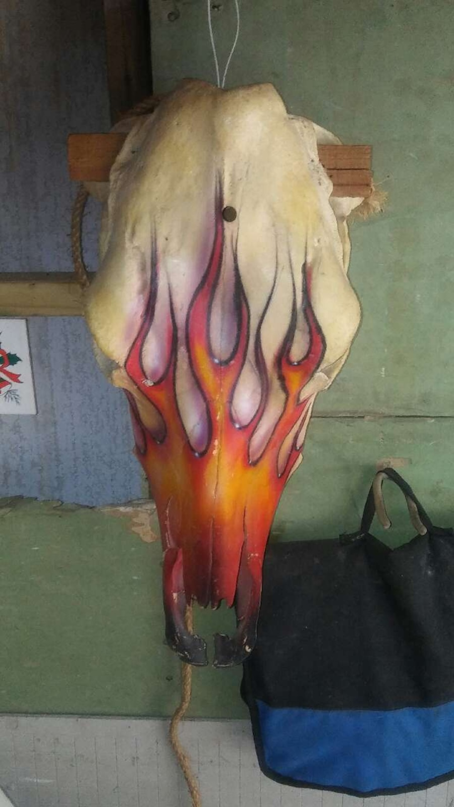 Custom Painted Cow Skull.