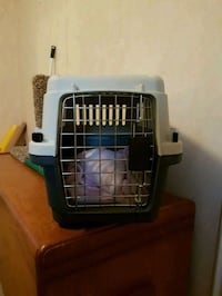 Cat carrier like new  Mississauga, L5E 2K5