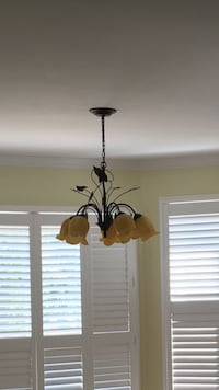 Two matching leaf chandeliers (both for $100)excellent condition Bolton, L7E 2X1