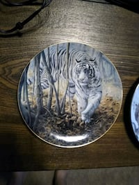 Collectible Plates with Big Cats