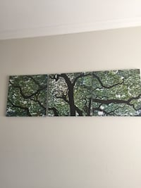 green and white tree painting Burnaby, V5G 1C9
