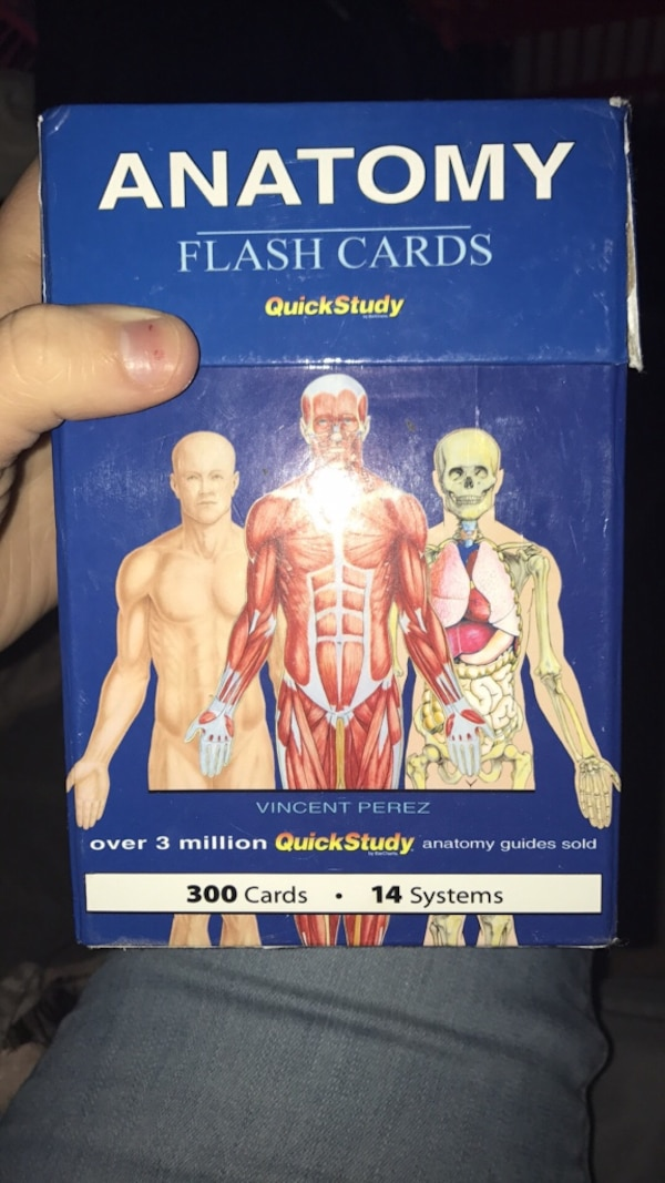 Used Anatomy Flash Cards Quickstudy For Sale In Gladstone Letgo