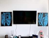 """LG 55"""" Flat Screen TV + Wall Mount (Excellent Condition) Miami, 33130"""