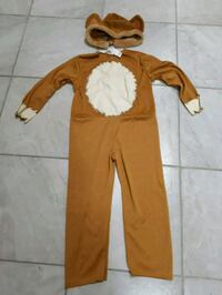 Lion Halloween costume  Windsor, N8W 4Z9