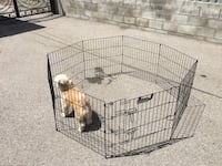 REDUCED Precision training cage Toronto, M6E 3X9