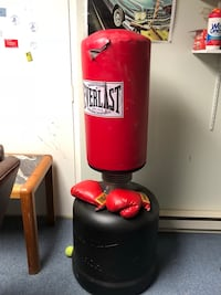 Everlast Punching Bag with gloves Warwick, 10990