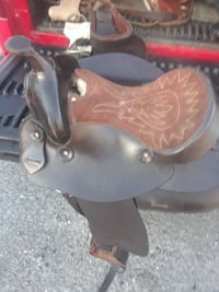 Chocolate collar Pony saddle 22 mi