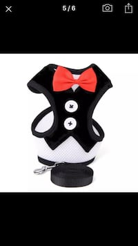 Cat or dog harness and leash