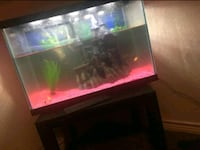 Fish tank for sell  Fort Worth, 76112