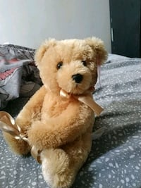 BRAND NEW light brown bear Mississauga, L5M 5P7