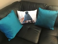 All 3 pillows for $10 Edmonton, T6T 1S6