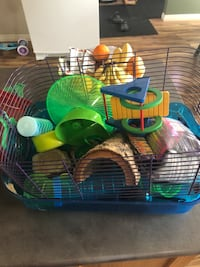 Hamster cage with food bedding and toys