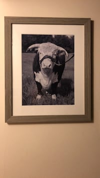 Cow Wall Picture With Frame  Columbia, 21044