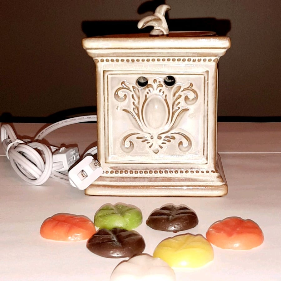 EUC Wax Warmer and wax melts