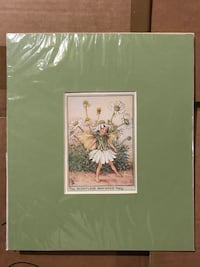 1960 SMB The Scentless Mayweed Fairy Picture