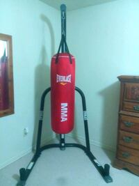 Everlast Punching Bag with Stand & Gloves Corpus Christi, 78412