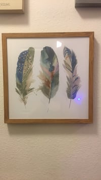 New Framed Feather Watercolor Alexandria, 22312