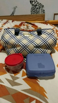 Tupperware® Lunch Tote