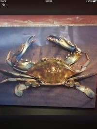 Beautiful picture on canvas, of a blue crab caught in the gulf. 16 x 20 Ocean Springs, 39564