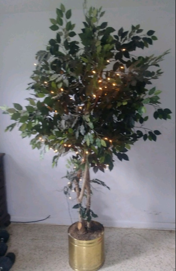 Artificial Tree  $50 or best offer