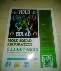 Mold Squad Restoration book
