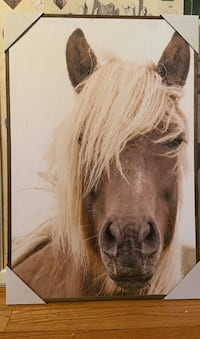 Horse Wall Decor with Frame
