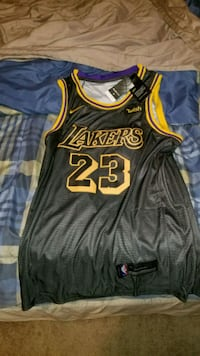 Lebron James Los Angeles Lakers Basketball Jersey Port Coquitlam, V3C 6H2