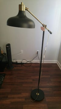black and brass-colored floor lamp