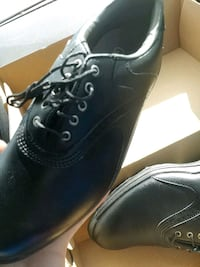 Brand new golf shoes Waterloo, N2T 2T4