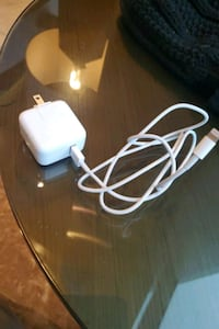 iPhone charger (Apple)