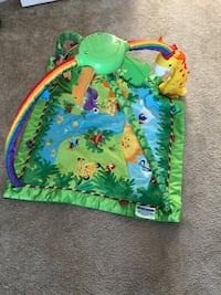 Fisher-Price® Rainforest Music and Lights Deluxe Gym Aldie, 20105