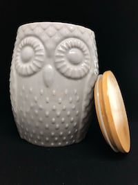 Unused Now Designs Owl Canister Burnaby, V3N 1K2