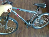gray Roadmaster hardtail mountain bike