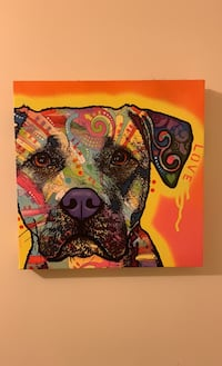 Pit Bull Painting Annandale, 22003
