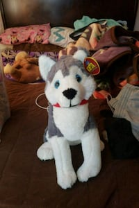 gray and white Siberian husky plush toy Soledad, 93960