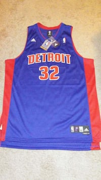 Detroit Pistons Richard Hamilton basketball jersey Lakewood