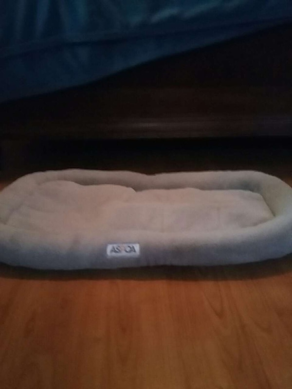 white aspoa pet bed