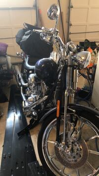 Custom Harley (Screamin Eagle 110) Alexandria, 22310