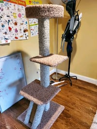 cat  Tree. Everything you need for new kitten