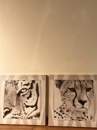 Tiger/Cheetah Wall Pictures Shakopee, 55379