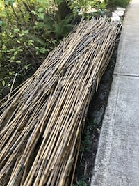 Bamboo stalks Clean and dry , 100's, Varying  lengths up to 12 feet Beaverton, 97005