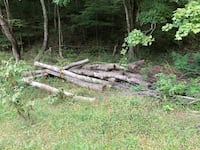 Cut your own firewood. $10 small truck & $15 full-size truck loads.  North Tazewell, 24630