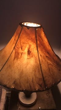 Stunning lampshade.  In perfect shape Chicago, 60626