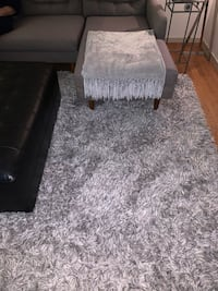 8 x 10 modern shag rug Boston, 02114